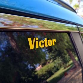 x4 Pack Vinilo ALTA CALIDAD Texto Nombre personalizado para coche, moto, coche, casco